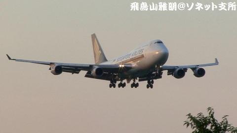 シンガポール航空 9V-SPE@成田国際空港。さくらの山公園より。