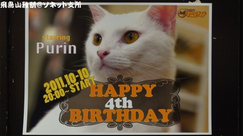 Happy 4th birthday - starring Purin (=^-^=)