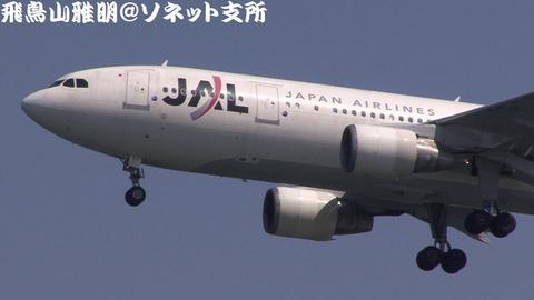 日本航空 JA011D@東京国際空港