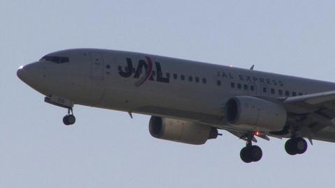 日本航空 - JALエクスプレス JA316J