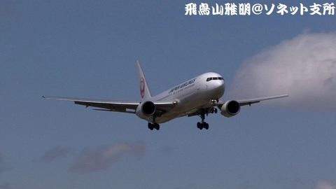 日本航空 JA613J@成田国際空港(さくらの山公園より)。RWY16Rへのファイナルアプローチ。北京からのJL860便。