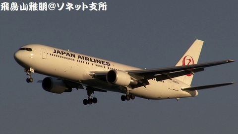 日本航空 JA655J@東京国際空港(浮島町公園より)。黄金色に染まる鶴丸機、美しいですなあ…。