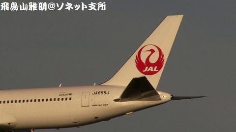 JA655J・機体後方+鶴丸のアップ。