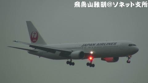 日本航空 JA656J@東京国際空港。雨の京浜島つばさ公園より。