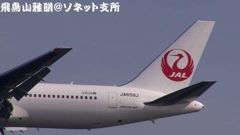 JA659J・機体後方のキャプチャ。いつ見ても、鶴丸は美しいねえ…。