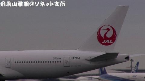 JA711J・機体後方(鶴丸)のアップ。