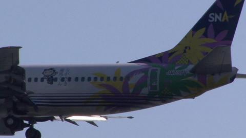 スカイネットアジア航空 JA737V