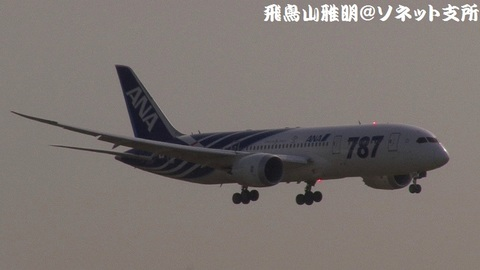 全日本空輸 JA801A@東京国際空港。強風下の京浜島つばさ公園より。