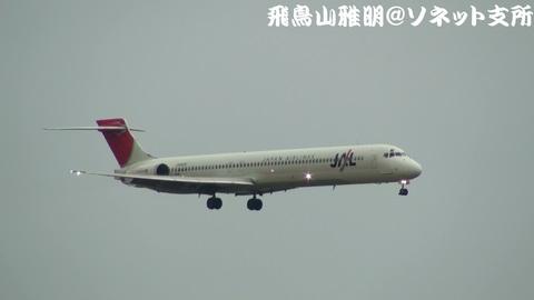 日本航空 JA8020@雨天下の東京国際空港。京浜島つばさ公園より。