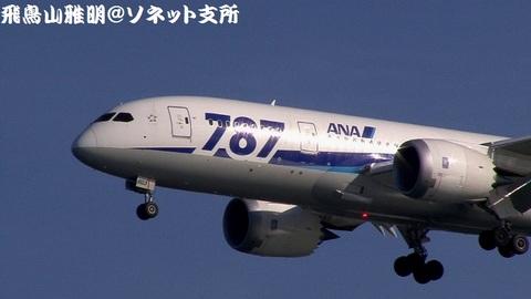JA803A・機体前方のアップ。