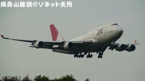 日本航空 JA8078@成田国際空港。さくらの山公園より。