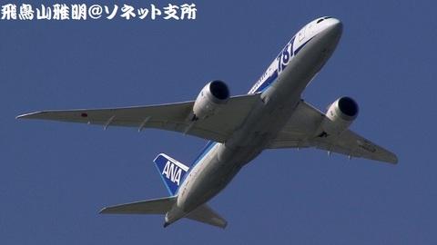 全日本空輸 JA807A@東京国際空港(浮島町公園より)。RWY16R上がりの迎え撃ち。