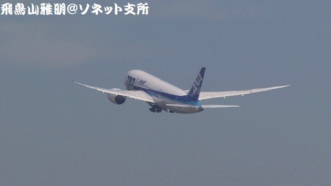 さらに上昇、車輪格納中のJA815A。NH1255便 北京首都国際空港行きです。
