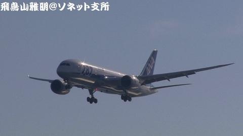 全日本空輸 JA816A@東京国際空港(浮島町公園より)。RWY34Lへのファイナルアプローチ。