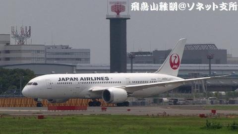 日本航空 JA826J@成田国際空港(さくらの山公園より)。約1年2ヶ月ぶりに撮影した日航の787が、まさに、この機体。ちなみに、こちらは左舷側のキャプチャです。