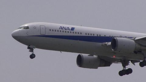 全日本空輸 JA8291