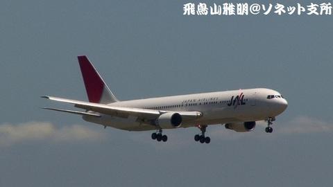 日本航空 JA8299@東京国際空港。京浜島つばさ公園より。