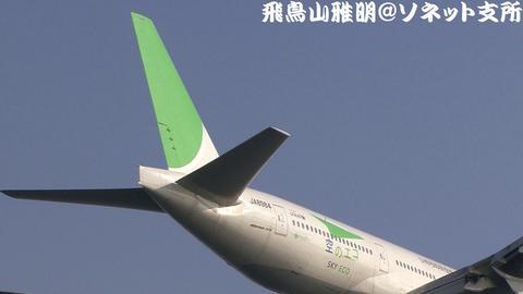 尾翼と「空のエコ」ロゴ