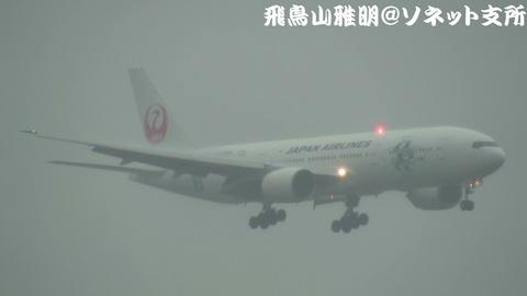 日本航空 JA8984「JALエコジェット・ネイチャー」@東京国際空港。雨の京浜島つばさ公園より。