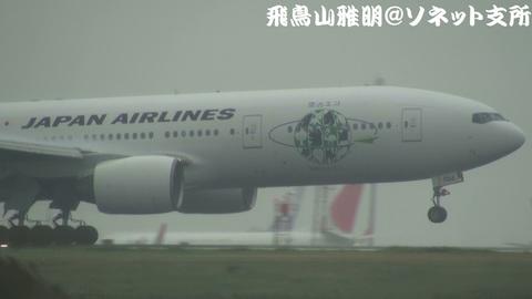「JALエコジェット・ネイチャー」機体前方のアップ。