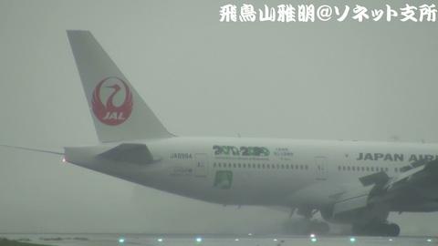 「JALエコジェット・ネイチャー」機体後方のアップ。